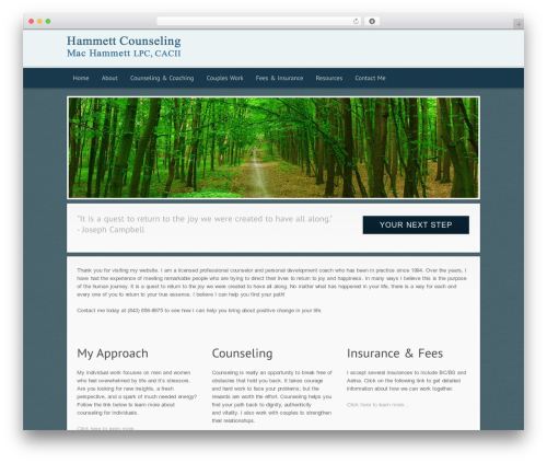 Modular WordPress blog theme - hammettcounseling.com
