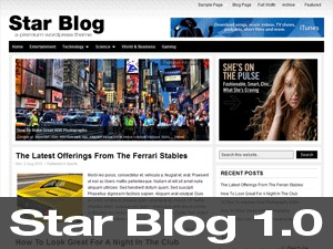Star Blog WordPress blog template