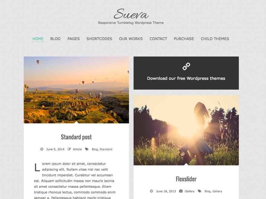 SuevaFree-HIMFoundation premium WordPress theme