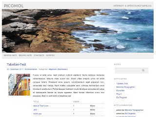 WordPress theme picoligt