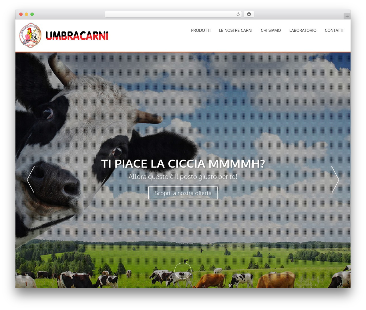 AccessPress Parallax WordPress theme free download - umbracarni.com