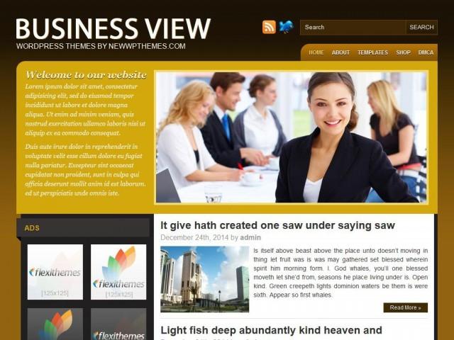 Business View business WordPress theme