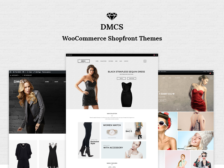 DMCS WordPress ecommerce template