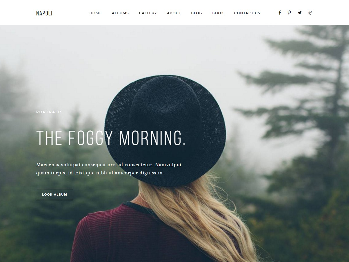 Napoli (Child Theme) premium WordPress theme