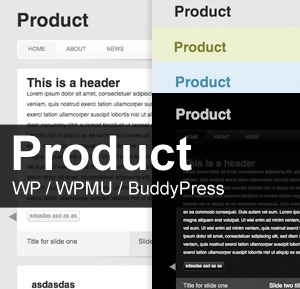 Product template WordPress