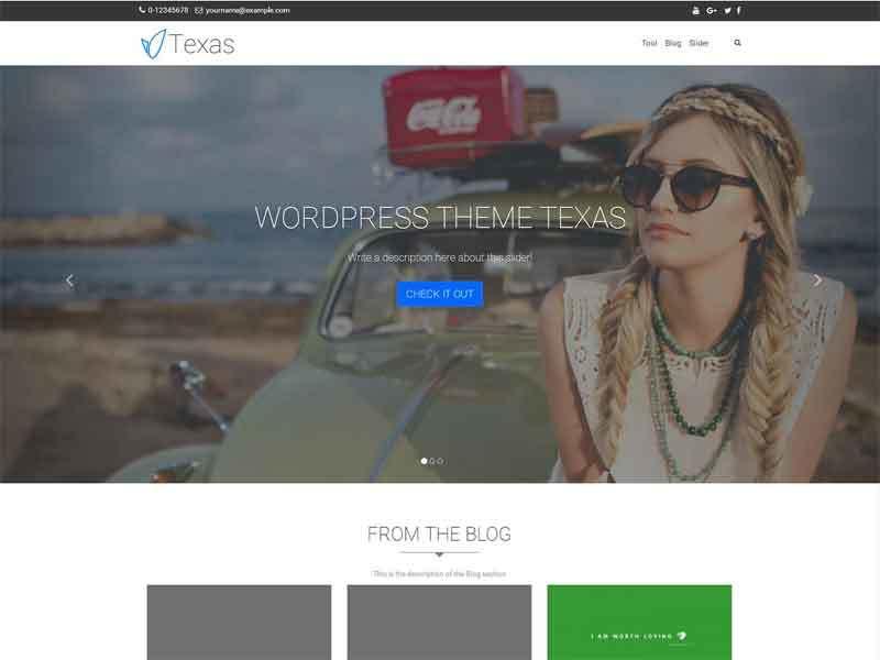 Texas free website theme