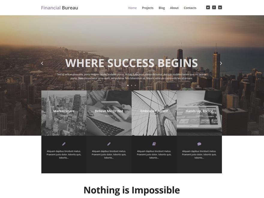 theme53444 WordPress theme design