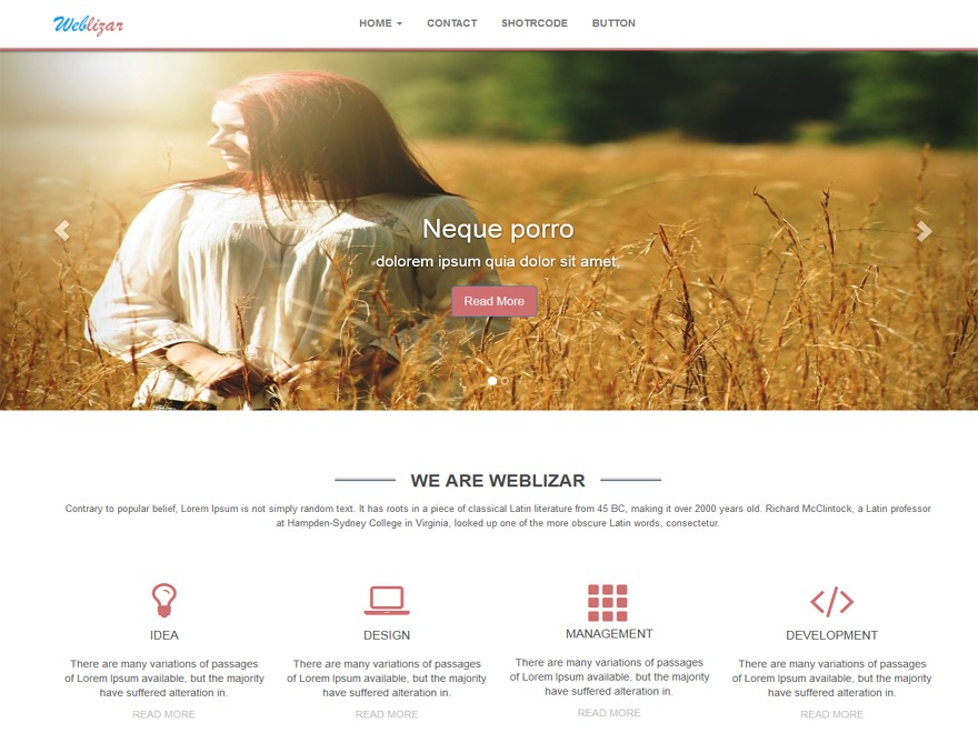 weblizar-brown business WordPress theme