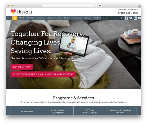 Free WordPress Team Showcase plugin - horizon-health.org