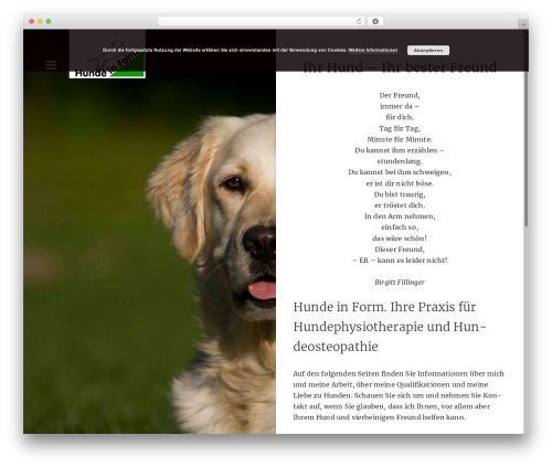 Writer theme free download - hunde-in-form.de