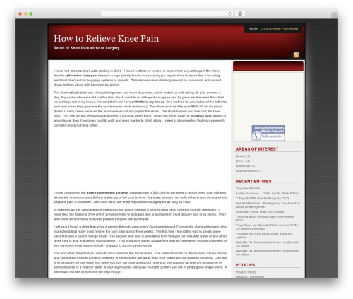 Affiliate Internet Marketing theme WordPress theme - howtorelievekneepain.net