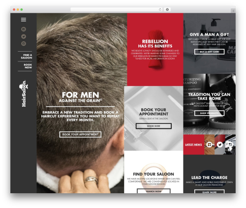 Free WordPress WP Store Locator plugin - hairsaloon.com