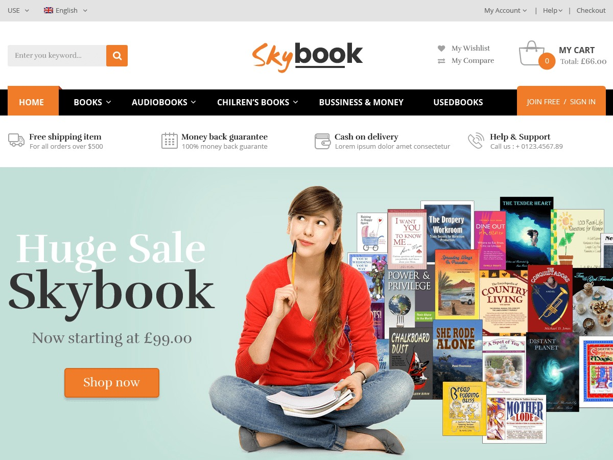 VG Skybook WordPress shopping theme