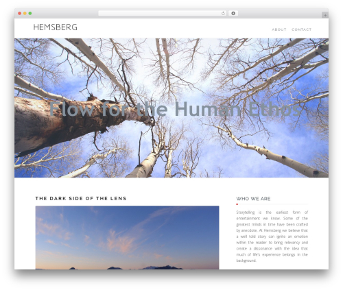 Writer free WordPress theme - hemsberg.com