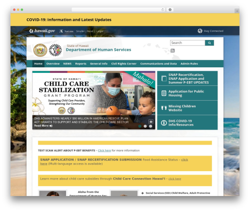 Best WordPress template State child Template - humanservices.hawaii.gov