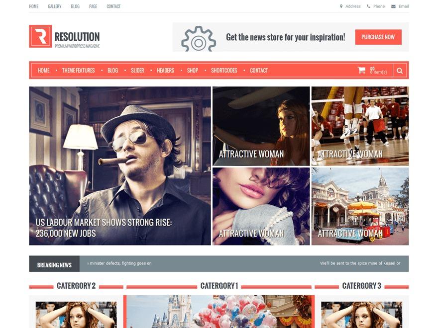 Resolution WordPress news template