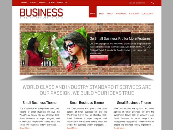 Small Business WordPress template for photographers