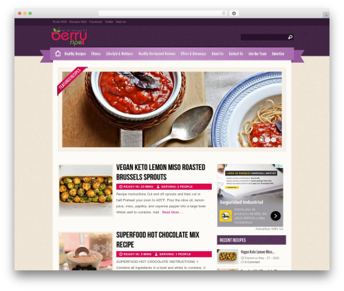 Theme WordPress Zylyz - berryripe.com