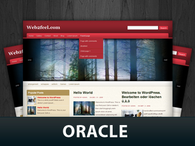 WordPress theme Web4kurd