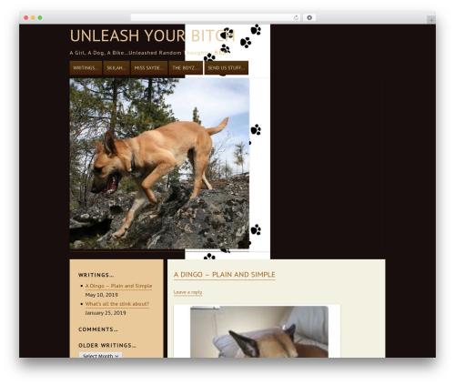 ar WordPress theme download - unleashyourbitch.com