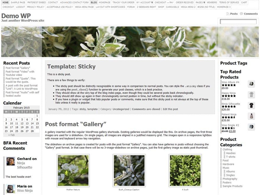Atahualpa template WordPress