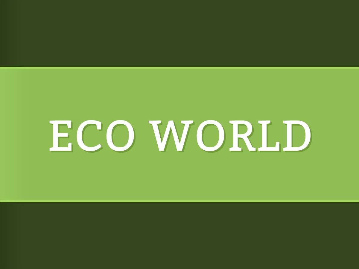 Eco World WordPress theme