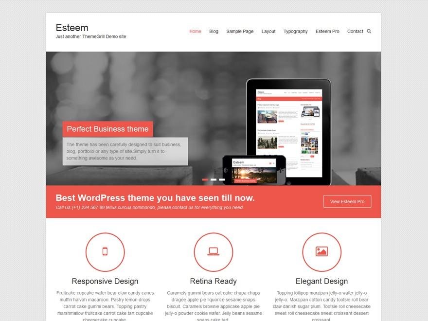 esteem-child premium WordPress theme