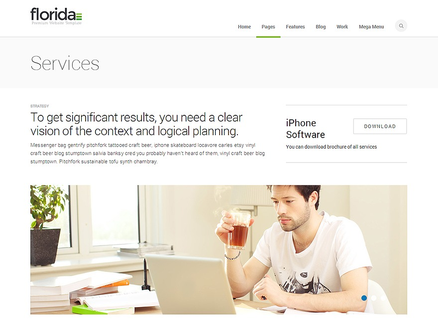 Florida company WordPress theme