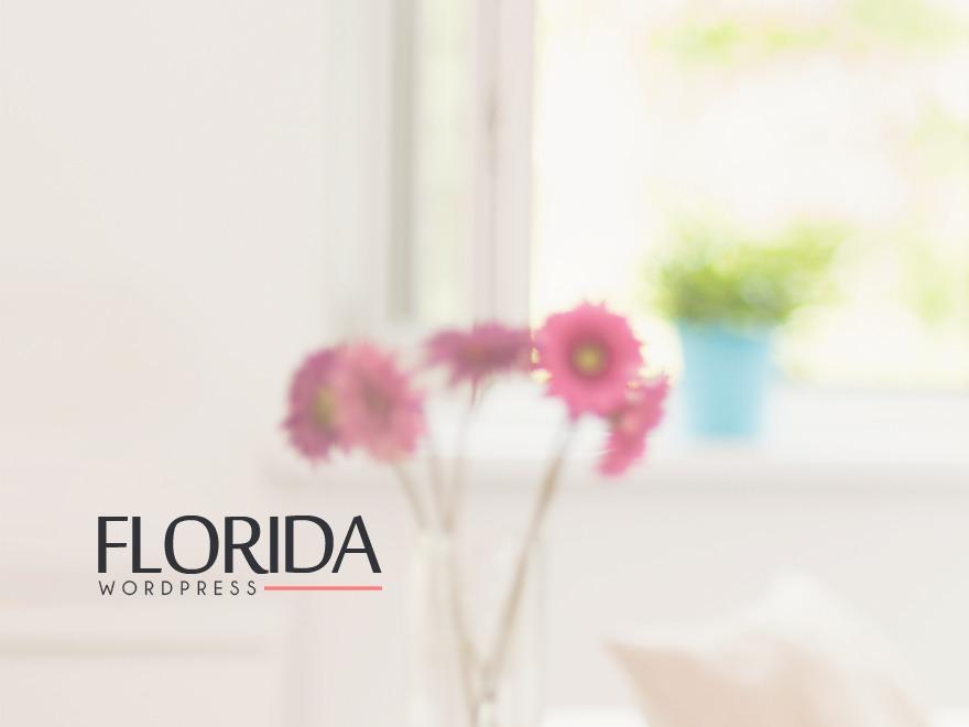 Florida (shared on jojothemes.com) theme WordPress portfolio