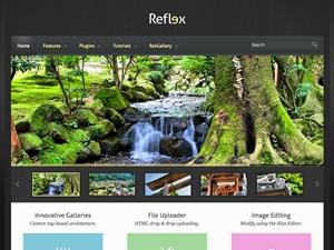 Reflex WordPress theme