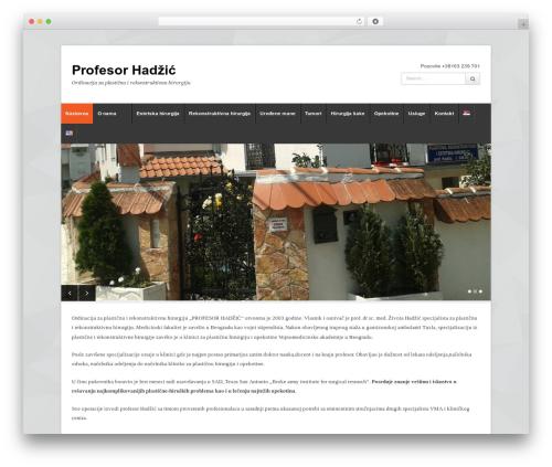 Free WordPress Polylang plugin - hadzic.co.rs