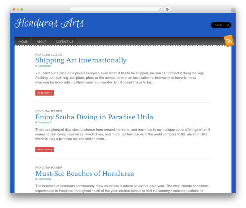 Snowblind best free WordPress theme - hondurasarts.com