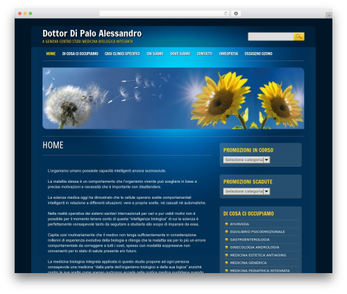 Online Marketer WP template - humananda.it