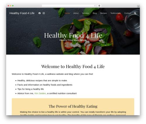 ZEPHYR WordPress theme - healthyfood4life.com