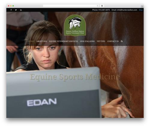 Best WordPress theme HorseClub - hunterstallion.com
