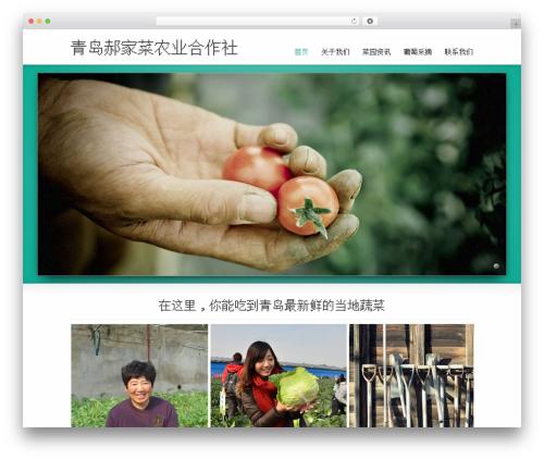 Striking MultiFlex & Ecommerce Responsive WordPress Theme WordPress ecommerce template - haojiacai.com.cn