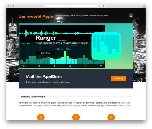 Bearded best WordPress template - bamsworld.biz