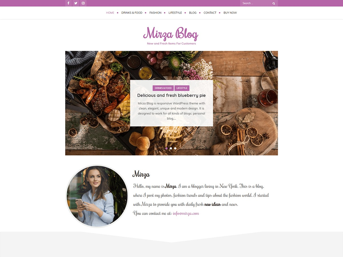Mirza Blog WordPress template for business