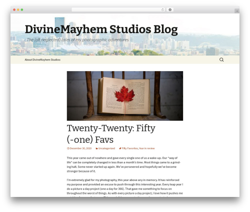 Best WordPress template Twenty Thirteen - blog.divinemayhem.com