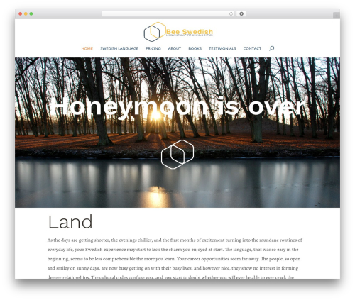 Divi template WordPress - beeswedish.com