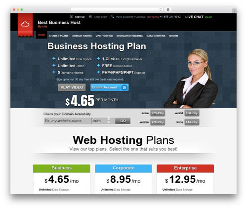 Easy Flow WordPress theme - bestbusinesshost.com