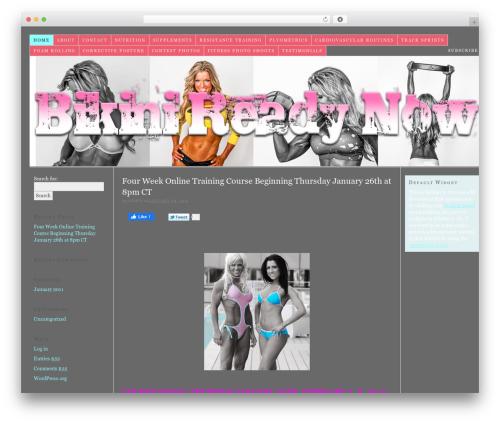 Free WordPress googleCards plugin - bikinireadynow.com