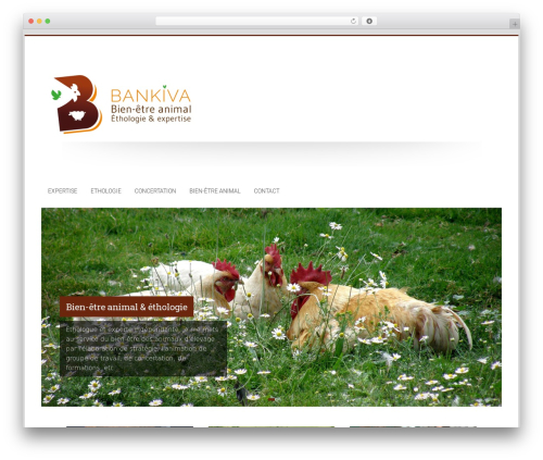WP template Accelerate - bankiva.fr