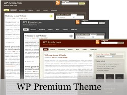 Best WordPress theme WP_Premium