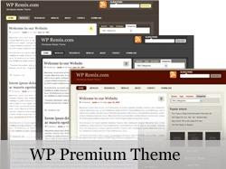 Best WordPress theme WP_Premium
