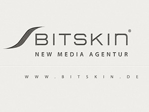 Bitskin WordPress website template