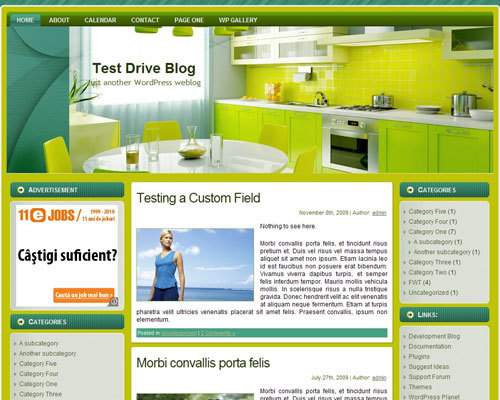 kitchen_wp_theme WordPress theme