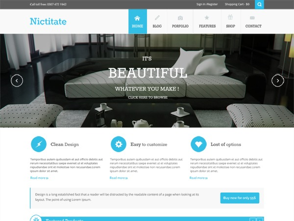 Nictitate best portfolio WordPress theme