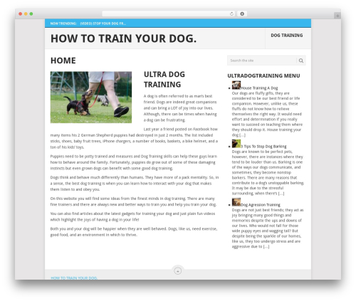 Point best free WordPress theme - ultradogtraining.com