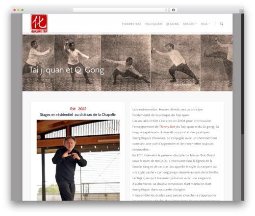 Salient best WordPress template - hua-bae.fr